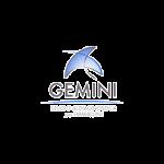 Gemini Radiologia & Ecografia