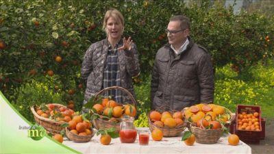 Le varietà di arance