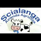 Azienda Agricola Scialanga
