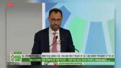 Pre-Food Systems Summit 2021, Patuanelli: è un vertice del popolo