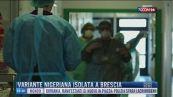Breaking News delle 16.00 | Variante nigeriana isolata a Brescia