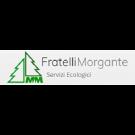 MM Fratelli Morgante