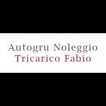 Autogru Noleggio Tricarico Fabio