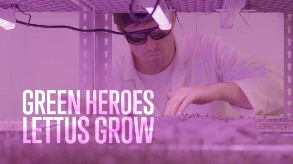 Green Heroes: episodio 2 – LettUs Grow