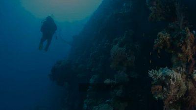 Durante un'immersione si imbatte in un relitto e fa un'assurda scoperta