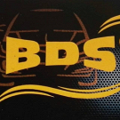 BDS Group Ricambi Auto