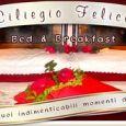 B&B CILIEGIO FELICE galleria