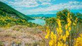La bellezza del lago di Cingoli, tra acque turchesi e natura