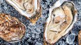 Perché presto potrebbe essere impossibile trovare le ostriche