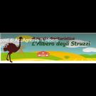 L' Albero degli Struzzi