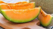 Come scegliere e conservare al meglio il melone