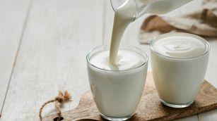 Kefir e yogurt, le differenze e quale scegliere