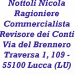 Nottoli Nicola  Ragioniere Commercialista Revisore dei Conti