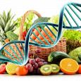 Dottoressa Cristina Mucci diete personalizzate