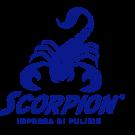 Impresa di Pulizie Scorpion
