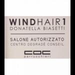 Wind Hair 1