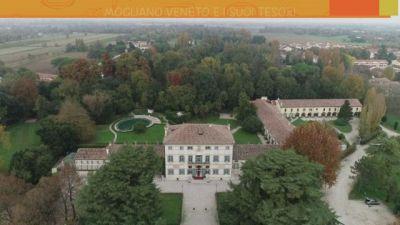 Mogliano Veneto e i suoi tesori