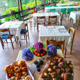 Le Ortensie cucina tradiazionale