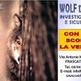 Wolf 122 Investigazioni locandina