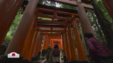 Viaggio nel tempio