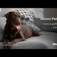Alianz Pet Care