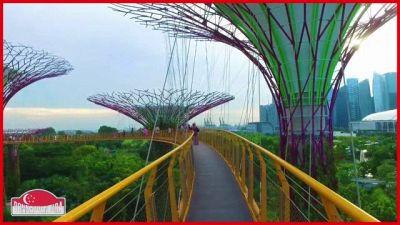"""""""La città del leone: Singapore"""""""