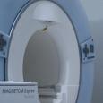Cobellis radiologia