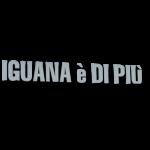 Iguana è di Più Panineria - Pizzeria  - Self Service