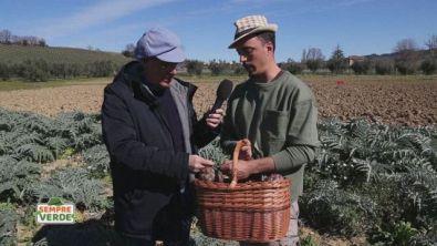 Il contadino di fiducia