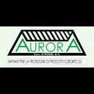 Aurora Serre