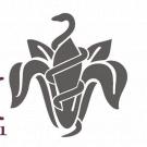 Farmacia Fiorentini
