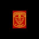 Istituto Vigilanza di Sondrio e Provincia - Securitas Servizi Integrati