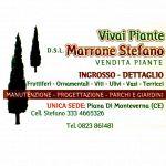 Vivaio Marrone Stefano