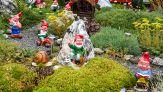 Questo account Instagram celebra i giardini più brutti del mondo