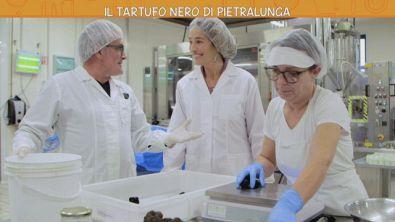 Il tartufo nero di Pietralunga