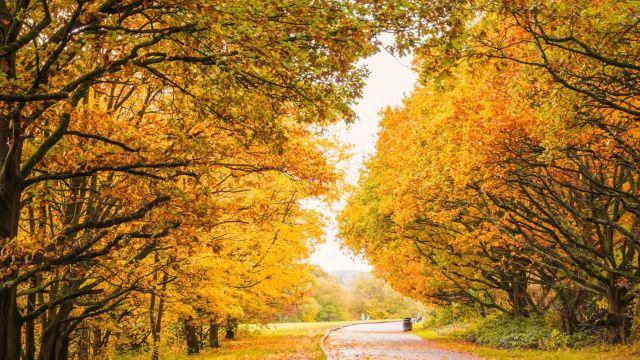 Equinozio d'autunno: cos'è e perché segna la fine dell'estate