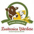 Zootecnica Viterbese