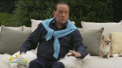 Silvio Berlusconi e gli animali