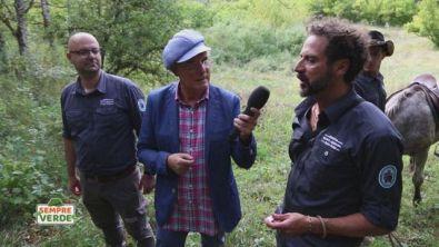 Riserva naturale del Monte Genzana e Alto Gizio