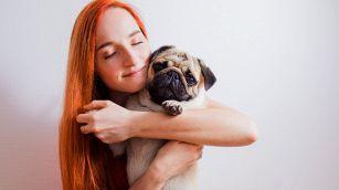 Congedo retribuito per lutto di un animale domestico: la proposta