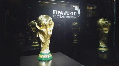 Bonansea, Sala e la Coppa del Mondo