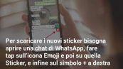 Come scaricare gli sticker animati The Fantastic Corgi su WhatsApp