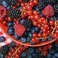Frutti di bosco zanei