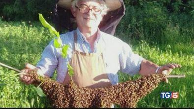 Muore assalito da sciame di api