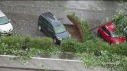 Tempesta estiva, paura e danni