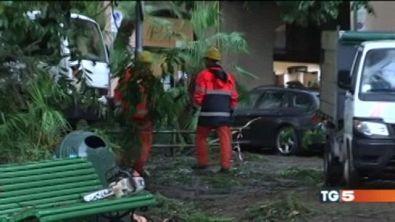 Vento e pioggia: danni tra Liguria e Toscana