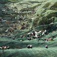 LA MATTERA SOCIETA' AGRICOLA Vendita Olio extravergine d'oliva