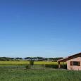 Agriturismo Le Giunchiglie - Azienda bioagrituristica agriturismo parco della maremma
