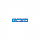 Centro Revisioni Autofficina Tummiolo Car Service