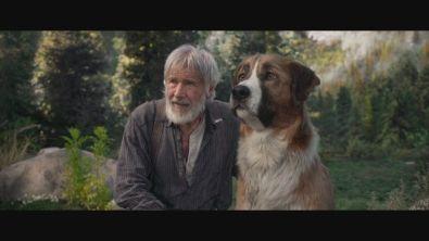 """Guarda il trailer italiano de """"Il richiamo della foresta"""""""